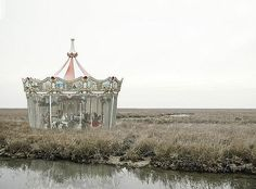 marsh carousel ; I like the juxtaposition used in this photograph
