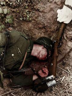 Fallen german soldier