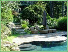 Exotic Backyard Landscapes