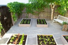 Raised Herb Garden: An Outdoor Space Makeover Raised Herb Garden: An Outdoor Space Makeover Raised Herb Garden, Raised Vegetable Gardens, Side Garden, Garden Soil, Garden Boxes, Garden Ideas, Outdoor Spa, Container Gardening, Herbs