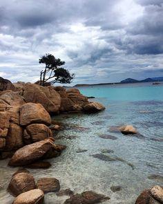 by http://ift.tt/1OJSkeg - Sardegna turismo by italylandscape.com #traveloffers #holiday |  #winter #sea #thunder #cloudy #cloudyday #sardinia #sardiniaexperience #lanuovasardegna #sardegnaofficial #sardegna #сардиния #igersardegna #sardegna_super_pics #ig_sardinia #igers_sardegna #capriccioli #costasmeralda #peverogolfclub #turistipercaso #italytrip #sardegnageographic Foto presente anche su http://ift.tt/1tOf9XD | January 29 2016 at 10:36AM (ph sabbadinelisa ) | #traveloffers #holiday…