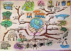 Carte heuristique sur l'environnement Graphic Organizer For Reading, Graphic Organizers, Design Mind Map, Mind Maping, Creative Mind Map, Mind Map Art, Earth Drawings, Brain Mapping, Mental Map