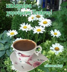 Good Night, Good Morning, Mugs, Tableware, Wednesday, Nighty Night, Buen Dia, Dinnerware, Bonjour