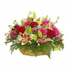 Send Fresh online same day flowers delivery to Pakistan with TohfaXpress; may send i.e. flowers, roses bouquet, love, imported, valentine roses and flowers bouquet to everywhere in Pakistan #sendflowerstopakistan, #Flowersgifts, #flowerstopakistan, #flowerstopakistanfromusa, #flowerdelivery, #sendflowers, #samedaydeliveryflowers, #importedflowers