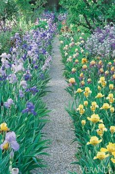 french gardens - Giverny