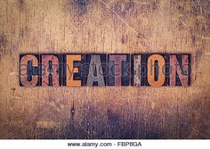 Image result for creation of adam type