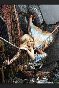 mermaid tail   Tumblr