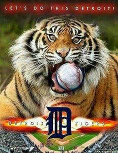 Detroit Tigers 2013 Home opener! Espn Baseball, Mlb Detroit Tigers, Detroit Sports, Detroit Tigers Baseball, Detroit Michigan, Baseball Shoes, Michigan Facts, Sports Teams, Detriot Tigers