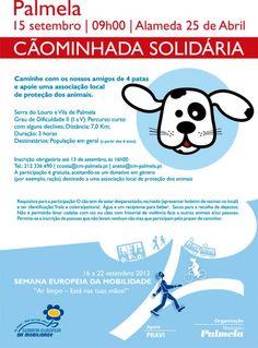 Desporto | Cãominhada Solidária | 15 de Setembro | 9h | Alameda 25 de Abril | Palmela
