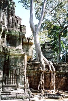 Cambodge voyage famille enfant