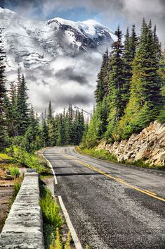 """Taking the High Road"" by Bob Noble Photography on Flickr ~ Mount Rainer near Sunrise Visitor Center, Mount Rainier National Park, Washington"