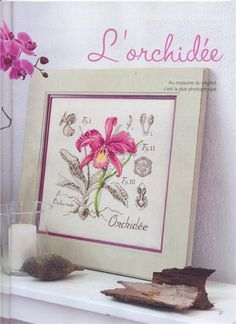 Cross stitch - flowers: botanicals - orchid (free pattern with chart)