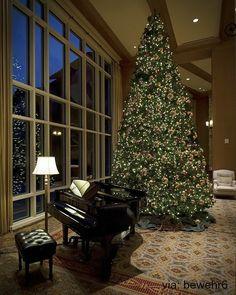 Black grand piano with Christmas tree