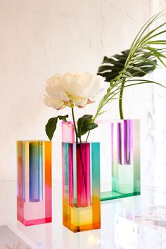 The Mellow Splendid Design Vase is the most evolved version of the Mellow series. Indeed, its gradient color mix is more subtle and presents itself as a real rainbow in your interior. one of the contemporary design lovers' favorite pieces. Its design also draws inspiration from Art Print Impressionism in the late 19th century. Really fascinating, it is perfect for those who usetocreate interior arrangements and centerpieces for their homes. Moreover, The Mellow Splendid Design Vase's desi Contemporary Vases, Contemporary Design, Room Ideias, Objet Deco Design, Design Vase, My New Room, Vases Decor, Centerpieces, Plexus Products