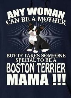 So true. Love my BT. He's a completely different dog now.