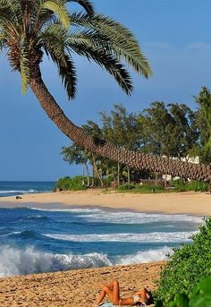 North Shore   Oahu, Hawaii~ where i could spend everyday!!!!