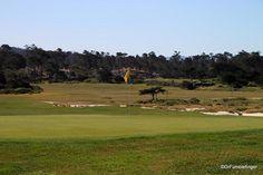 Seventeen Mile Drive, Spanish Bay Golf course