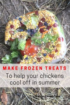 How to make a frozen treat for your chickens in summer. Help your flock beat the heat with this cool and nutritious treat! Chicken Garden, Chicken Life, Backyard Chicken Coops, Chicken Runs, Diy Chicken Coop, City Chicken, Chicken Feeders, Chicken Houses, Chicken Coop Pallets