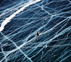 Ice Rider Crosses World's Oldest Lake      French photographer Matthieu Paley is the person behind this almost unbelievable photo called Ice Rider. It was taken in Siberia.