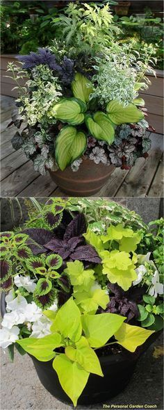 How to create beautiful shade garden pots using easy to grow plants with showy foliage and flowers. And plant lists for all 16 container planting designs! - A Piece Of Rainbow Shade Garden, Lawn And Garden
