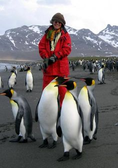 Antartica!  I have been a penguin lover my entire life!  This looks awesome!