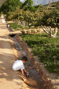 Babylonstoren - Western Cape, South Africa (never heard of this place - who can tell us where it is? Permaculture, Veg Garden, Water Element, Backyard Projects, Organic Farming, Beautiful Places To Visit, Dream Garden, Landscape Architecture, The Great Outdoors