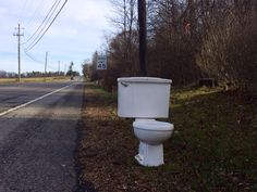 Toilet, in great contrast to its background.  Owner kept the seat.  Notice the rusty mounting points along base.