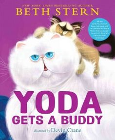 Yoda the Persian cat oversees the foster cats but learns a lot when Buddy, a new kitten, joins the group.