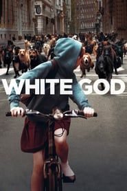Free Watch White God : Full Length Movies Favoring Pedigree Dogs, A New Regulation Puts A Severe Tax On Mixed Breeds. Owners Dump Their Dogs. Popular Movies, Latest Movies, White God, Top Rated Movies, Top Movies, Best Action Movies, Man And Dog, Movies 2019, Netflix Movies
