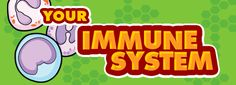 Back to School Vitamins. The immune system is your child's first line of defense. - vitamins - Back to School Vitamins. The immune system is your child's first line of defense when anything tr - Accredited Nursing Schools, Best Nursing Schools, Health Class, Health Lessons, Cna School, Back To School, Science Classroom, Teaching Science, What Is Nursing