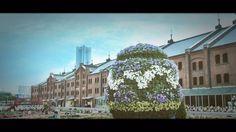 横浜2016年4月10日朝 on Vimeo