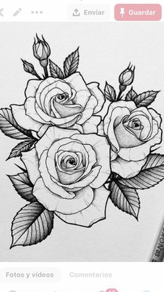 Rose Drawing Tattoo, Butterfly Drawing, Floral Drawing, Tattoo Drawings, Flower Sketches, Art Drawings Sketches Simple, Pencil Art Drawings, Cute Drawings, Rose Zeichnung Tattoo