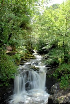 Upper waterfall at Torc in Co. Kerry, Ireland