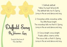 Illustrated Daffodil Song Sheet St Davids Day Resource Free EYFS Resources for Teachers Preschool Songs, Kids Songs, Daffodils Poem, Daffodil Day, Easter Songs, Saint David's Day, Saints Days, Song Sheet, Finger Plays