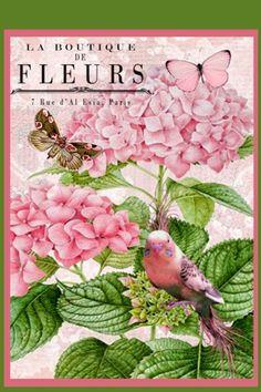 Vintage Diy, Vintage Labels, Vintage Paper, Vintage Flowers, Vintage Images, Decoupage Art, Decoupage Vintage, Botanical Illustration, Botanical Prints