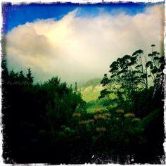 Table Mountain by Treacy-ann Markham on 500px