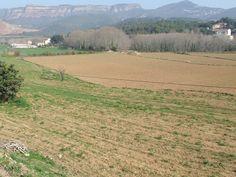 La Quintana de Can Noguera (Bigues i Riells)