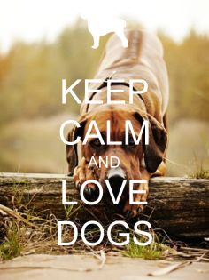 KEEP CALM AND LOVE DOGS - KEEP CALM AND CARRY ON Image Generator - brought to you by the Ministry of Information