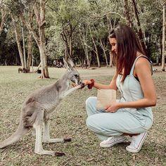 Jess conte in Australia! Gabriel Conte, Jess Conte, Zoo Photos, Cutest Thing Ever, I Want To Travel, Dream Life, Kangaroo, Cuddling, Giraffe