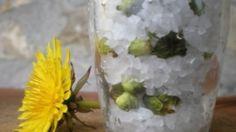 Ricetta Boccioli di tarassaco sotto sale: Chi l'avrebbe mai detto che i boccioli di tarassaco si possono utilizzare come fossero capperi e addirittura conservarli sotto sale proprio alla stregua dei capperi. Cinzia ci spiega come fare.