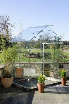 6'6 Greenhouse (2174.jpg).jpg