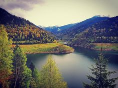 Romania's forests Transylvania is magical #travel #Transylvania #romania #brasov #forest #lake #hills #nature #backpackingeurope #summer #interrailing