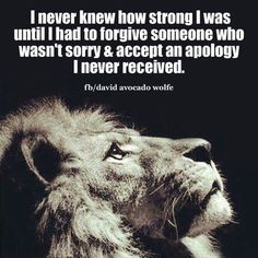 """This quote could move mountains...the strength I built from the betrayal and deceit from a """"friend"""" made me the person I am today. My strength grows daily and I am stronger than I ever could have imagined. And you..well, you are still you."""
