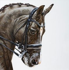 Valegro, painted in acrylics on canvas board. #valegro #charlottedujardin #dressagehorse #dressage #equineart #equineartist #equestrianart #horsesofinstagram #horseart #animalcreatives #acrylicartists #ginahawkshaw