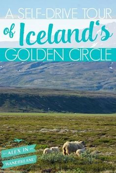 The Golden Circle is one of the most popular tourist attractions in Iceland.  Here are a few of the reasons we chose to do this pilgrimage on our own rather than a guided tour
