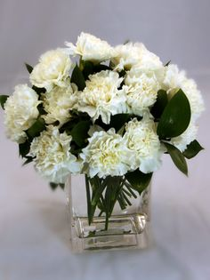 images of carnation centerpieces   White Vintage Carnations - Centerpiece
