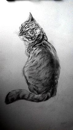 животные. рисунок карандашом. мои рисунки.