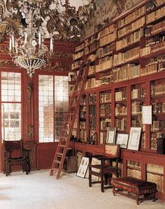 bookshelves with a ladder and a chandelier!