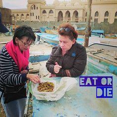 Trust me it's eatable!  #friedcalamari #visithurghada  #fishingmarina by karzummik