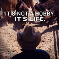#Horses #WayofLife #JustinBoots #Cowboy